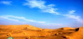 One Day In Desert