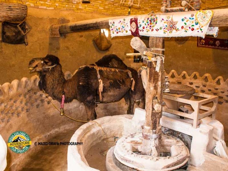Camel Mill